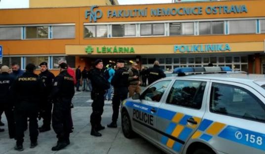 Sulm me armë në Çeki, 6 të vrarë