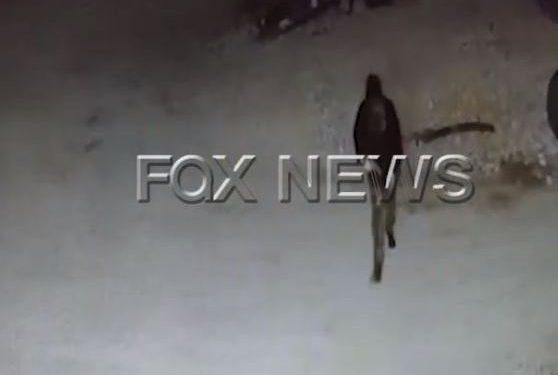VIDEO/ I maskuar dhe me kallashnikov në dorë, momentet para ekzekutimit të Artur Breshës në Tepelenë